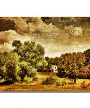Trademark Fine Art Old Farm House By Lois Bryan Canvas Wall Art 0 300x360