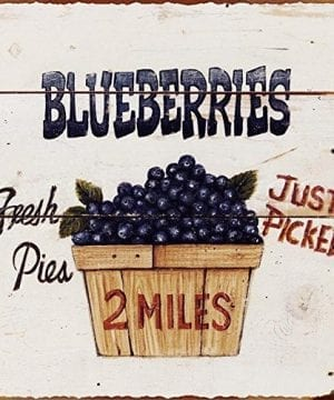 Barnyard Designs Fresh Picked Blueberries Retro Vintage Tin Bar Sign Country Home Decor 11 X 11 0 300x360