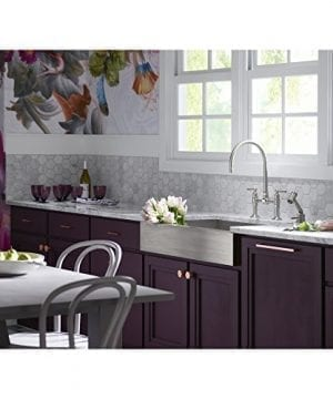 KOHLER K 3943 NA Vault Undercounter Single Basin Stainless Steel Sink With Shortened Apron Front For 36 Inch Cabinet 0 1 300x360