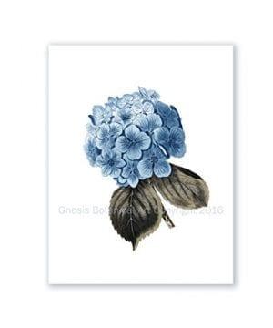 Blue Flowers Botanical Prints Set Of 4 Unframed Hydrangeas Botanical Art Prints Farmhouse Decor BlueHydrangea4A 0 1 300x360