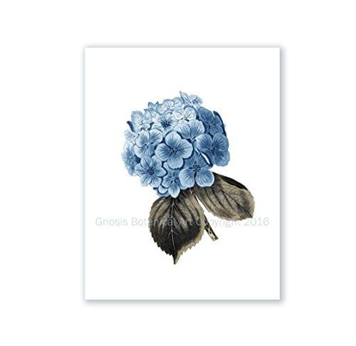Blue Flowers Botanical Prints Set Of 4 Unframed Hydrangeas Botanical Art Prints Farmhouse Decor BlueHydrangea4A 0 1