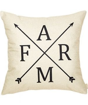 Fahrendom Rustic Farm Fresh Eggs Hen Vintage Country Style Retro Farmhouse Quote Gift Cotton Linen Home Decorative Throw Pillow Case Cushion Cover With Words For Sofa Couch 18 X 18 Inch 0 300x360