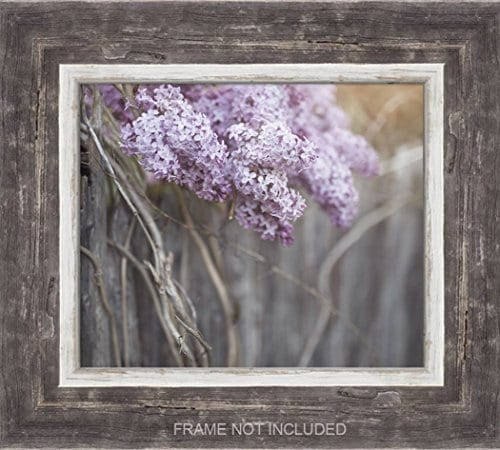 Farmhouse Decor 4 PRINT SET 8x10 Lilacs Country Decor Rustic Wall Art Country Print Set Of 4 Rustic Country Landscape Prints Or Canvases Farm Art Fixer Upper Wood Plank Photo 0 0