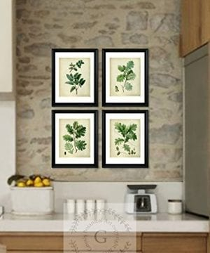 Farmhouse Decor Set Of 4 Unframed Oak Leaf Art Prints Vintage Botanical Prints Home Decor OakLeaveVintage4A 0 0 300x360