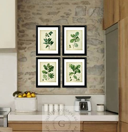 Farmhouse Decor Set Of 4 Unframed Oak Leaf Art Prints Vintage Botanical Prints Home Decor OakLeaveVintage4A 0 0