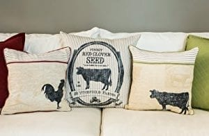 Heritage Lace Farmhouse 22 X 22 Butterfield Farms Pillow Cover 0 0 300x196
