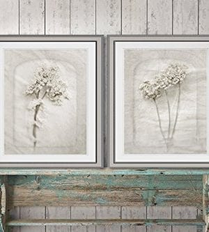 Queen Annes Lace Wall Art 8x10 Prints Cottage Decor Cream Wall Decor Fixer Upper Farmhouse Rustic Gift For Her 0 0 300x333