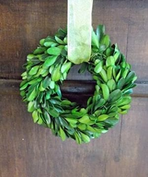 5 Small Preserved Boxwood Mini Wreath With Sheer Green Ribbon For Year Round Christmas Wedding Rustic Farmhouse Home Decor Door Or Mirror Hanger Green Extra Full 0 300x360