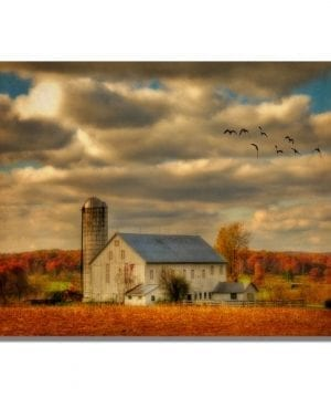 Family Farm II By Lois Bryan 22x32 Inch Canvas Wall Art 0 300x360