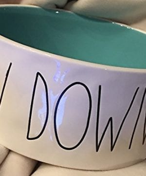 Rae Dunn Magenta Artisan Collection Pet Food Bowl CHOW DOWN Black Letters With Teal Inside 0 0 300x360