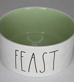 Rae Dunn Magenta Ceramic Large Pet Food Bowl Cat Dog Dish Feast CreamGreen 0 300x333