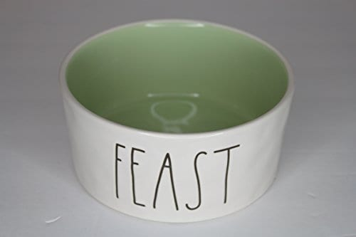 Rae Dunn Magenta Ceramic Large Pet Food Bowl Cat Dog Dish Feast CreamGreen 0