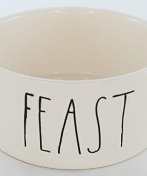 Rae Dunn Magenta Ceramic Pet Bowl Feast Large 6 Inch 0 300x360
