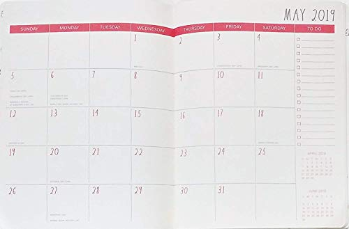 Rae Dunn Plan Ahead 2019 Monthly Planner Calendar 17 Months Aug 2018 Dec 2019 To DoNotes 0 0