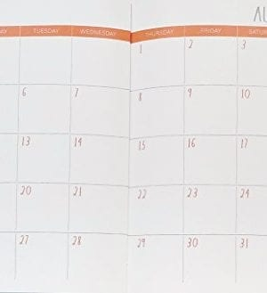 Rae Dunn Seize The Day 2019 Monthly Planner Calendar 17 Months Aug 2018 Dec 2019 To DoNotes 0 0 300x329