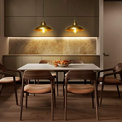 Barn Pendant Lights, FINXIN 1-Light Hanging Light for Kitchen Dining Table  FXPL03 Gold 12\