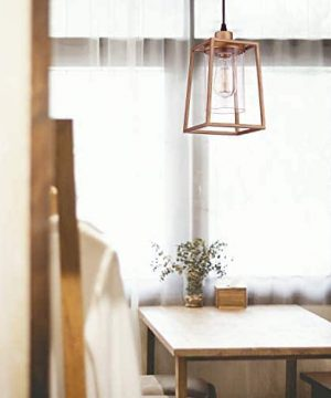 Emliviar Indoor Mini Pendant Light Cage Hanging Light Fixture Antique Gold Finish With Clear Glass Shade 3046M1L 0 1 300x360