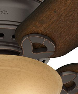 Hunter 51023 Conroy 42 Inch Onyx Bengal Ceiling Fan With Five Burnished Mahogany Blades And A Light Kit 0 0 300x360