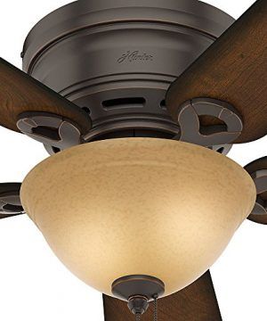 Hunter 51023 Conroy 42 Inch Onyx Bengal Ceiling Fan With Five Burnished Mahogany Blades And A Light Kit 0 1 300x360