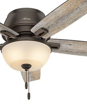 Hunter Fan 52 Inch Low Profile Ceiling Fan In Onyx Bengal With LED Bowl Light Kit And 5 Barnwood Fan Blades Renewed 0 300x360