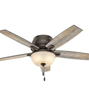 Hunter Fan 52 Inch Low Profile Ceiling Fan In Onyx Bengal With LED Bowl Light Kit And 5 Barnwood Fan Blades Renewed 0 4 300x360