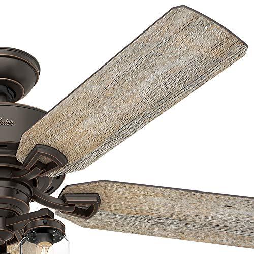Hunter Fan Company 54201 Hunter 52 Devon Park Onyx Bengal LED Light And Handheld Remote Ceiling Fan 0 1