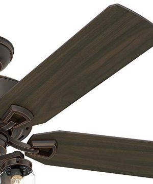 Hunter Fan Company 54201 Hunter 52 Devon Park Onyx Bengal LED Light And Handheld Remote Ceiling Fan 0 2 300x360