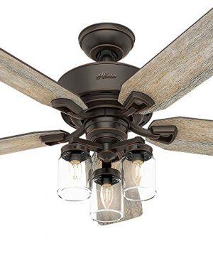 Hunter Fan Company 54201 Hunter 52 Devon Park Onyx Bengal LED Light And Handheld Remote Ceiling Fan 0 4 300x360