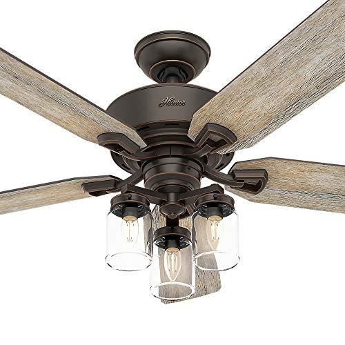 Hunter Fan Company 54201 Hunter 52 Devon Park Onyx Bengal LED Light And Handheld Remote Ceiling Fan 0 4