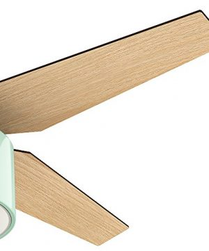 Hunter Fan Company 59258 Hunter 52 Cranbrook Mint Ceiling Fan With Light And Remote 0 1 300x360
