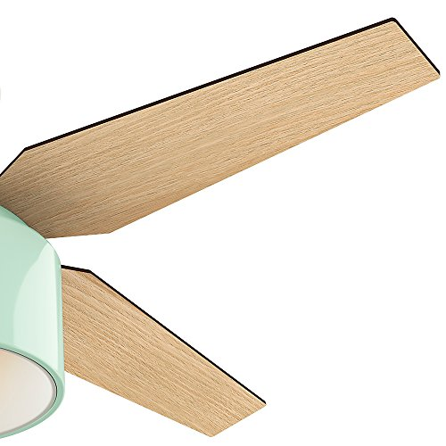 Hunter Fan Company 59258 Hunter 52 Cranbrook Mint Ceiling Fan With Light And Remote 0 1