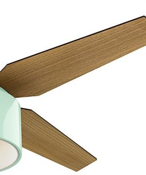 Hunter Fan Company 59258 Hunter 52 Cranbrook Mint Ceiling Fan With Light And Remote 0 2 300x360