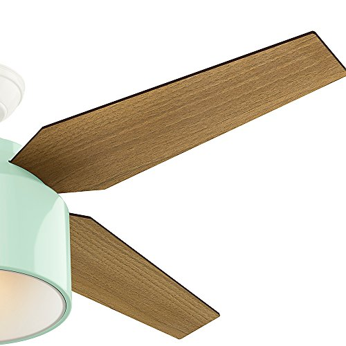 Hunter Fan Company 59258 Hunter 52 Cranbrook Mint Ceiling Fan With Light And Remote 0 2