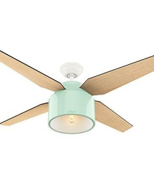Hunter Fan Company 59258 Hunter 52 Cranbrook Mint Ceiling Fan With Light And Remote 0 300x360