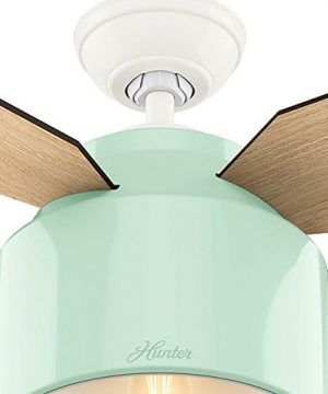 Hunter Fan Company 59258 Hunter 52 Cranbrook Mint Ceiling Fan With Light And Remote 0 5 300x360