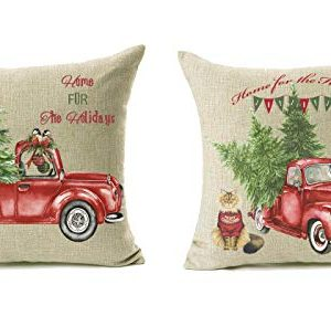 18x18 Christmas Throw Pillow Covers Set Of 2 Decorative Farmhouse Outdoor Merry Christmas Xmas Cushion Lumbar Pillow Shams Cover Cases Red Truck Tree Dog Cat Couch Sofa 0 300x286