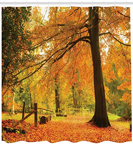 Ambesonne Farm House Decor Collection Autumn Fall Forest Scene With Vibrant Colors And Pale Leaves Tranquil Peace Nature Polyester Fabric Bathroom Shower Curtain 84 Inches Extra Long Orange Brown 0 0