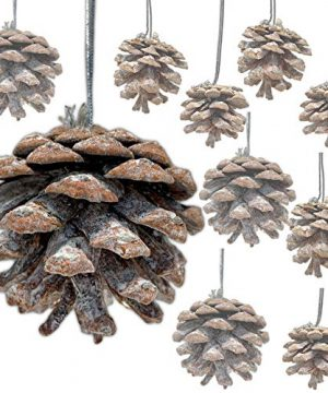 BANBERRY DESIGNS Pinecone Ornaments Bag Of Approx 30 Real Pinecones Assorted Sizes Natural Brown White Washed Cones Strings Rustic Small Pinecones Bulk Fall Christmas 15 Inch To 25 Inch 0 300x360