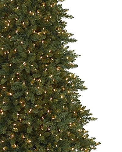 Balsam Hill Berkshire Mountain Fir Artificial Christmas Tree 65 Feet Clear Lights 0 0