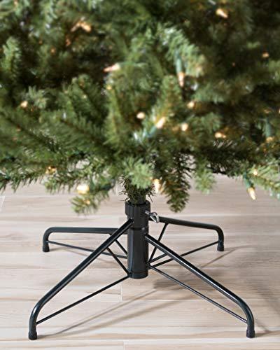 Balsam Hill Berkshire Mountain Fir Artificial Christmas Tree 65 Feet Clear Lights 0 2