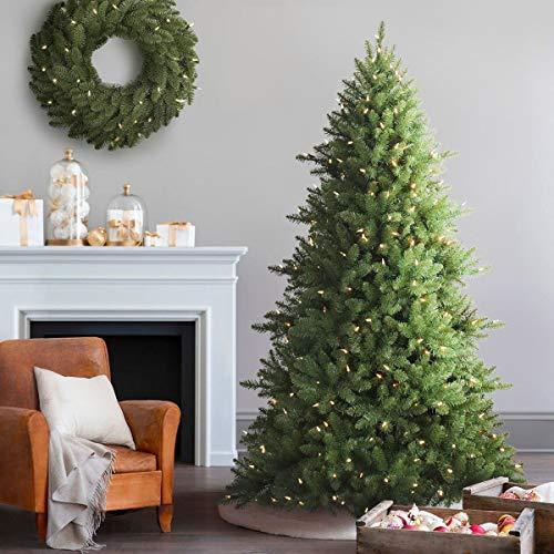 Balsam Hill Berkshire Mountain Fir Artificial Christmas Tree 65 Feet Clear Lights 0