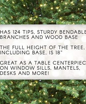 Darice Mini Canadian Pine Tree With Wood Base 1pc Green Spread Holiday Dcor Around Your Home Artificial Tree Has 124 Tips And Works Great With Mini Ornaments And Lights 18 0 1 300x360