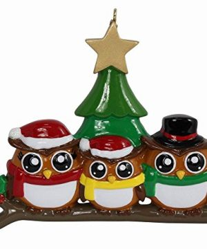 MAXORA Personalized Family Ornament Owl Family 3 Christmas Ornament 0 300x360