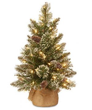 National Tree 2 Foot Glittery Bristle Pine Tree With White Tipped Cones And 15 Battery Operated Warm White LED Lights S In Burlap Base GB3 392 20 B1 0 0 300x360