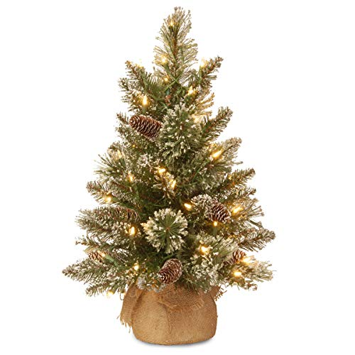 National Tree 2 Foot Glittery Bristle Pine Tree With White Tipped Cones And 15 Battery Operated Warm White LED Lights S In Burlap Base GB3 392 20 B1 0 0