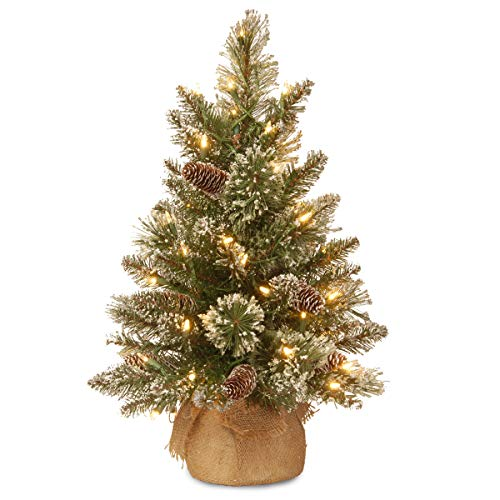 National Tree 2 Foot Glittery Bristle Pine Tree With White Tipped Cones And 15 Battery Operated Warm White LED Lights S In Burlap Base GB3 392 20 B1 0