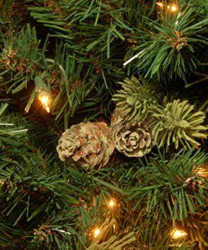 National Tree 75 Foot Carolina Pine Tree With Flocked Cones And 750 Clear Lights Hinged CAP3 306 75 0 2 300x360