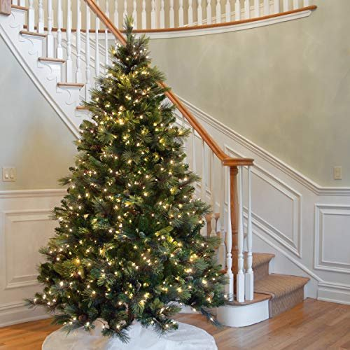National Tree 75 Foot Carolina Pine Tree With Flocked Cones And 750 Clear Lights Hinged CAP3 306 75 0 3