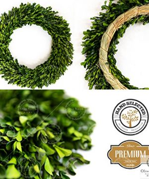 Olive Branch Home Preserved Boxwood Wreath With Straw Back Large Indoor Year Round Green Wreath 20 Inch Round 0 0 300x360