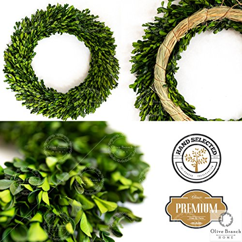 Olive Branch Home Preserved Boxwood Wreath With Straw Back Large Indoor Year Round Green Wreath 20 Inch Round 0 0